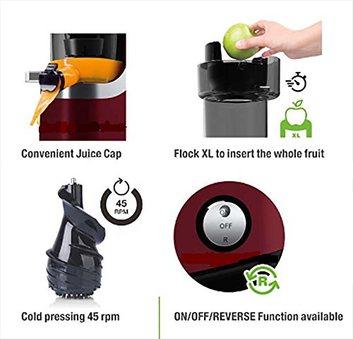 Slow Juicer – VitaSpeed Multifunktions Entsafter kaufen  Bild 1*
