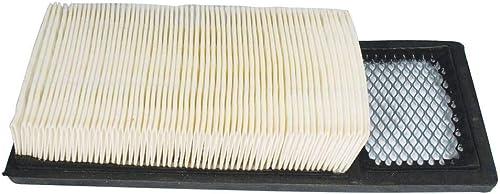 Stens 100-663 Air Filter Replaces E-Z-Go 72368G01 72144G01