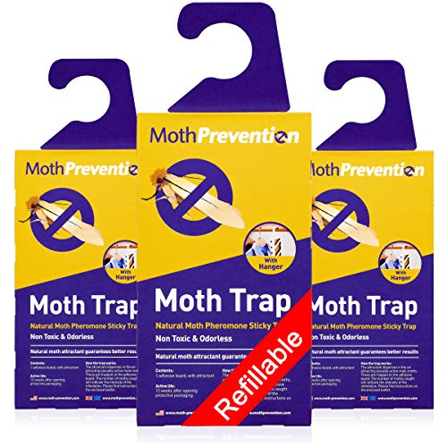 Powerful Moth Traps for Clothes Moths | 3-Pack | Refillable, Odor-Free & Natural from MothPrevention | Best Catch-Rate for Clothes Moth and Carpet Moth Traps on The Market! - Results Guaranteed…