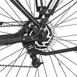 Fischer E-Bikes Test
