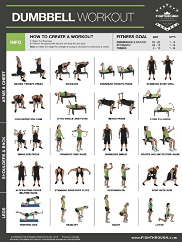 Dumbbell High Intensity Workout - Laminated Poster / Chart - Strength Training - Core - Chest - Legs - Shoulders & Back - Build Muscle, Tone Tighten - With Dumbbell Training - 18'x24'