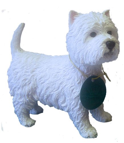 West Highland Terrier (Westie) Dog Ornament Dog Studies by Leonardo
