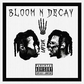 Bloom N Decay 4