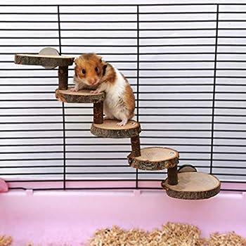 Augneveres Échelle en Bois pour Hamsters Jouet de Pont pour Animaux de Compagnie Naturel Outil de Formation d'escaliers d'escalade en Toute sécurité pour Hamsters Gerbil Mouse Cage Pet Very Well