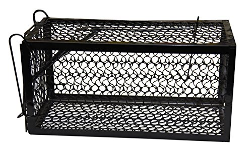 Harris Catch and Release Humane Animal and Rodent Cage Trap for Mice, Rats, Chipmunks, and Small Squirrels (9.3in x 4.3in x 4.5in)