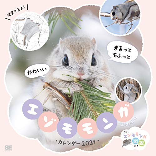 まるっともふっと かわいいエゾモモンガカレンダー 2021 (翔泳社カレンダー)