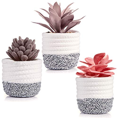 Artificial Succulents in Plant Basket for Shelf Decor, Office Desk, Living Room Table and Bedroom Decorations - Set of 3 Purple and Red Fake Succulents with Removable Rope Basket