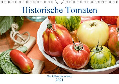 Historische Tomaten - Alte Schätze neu entdeckt (Wandkalender 2021 DIN A4 quer)