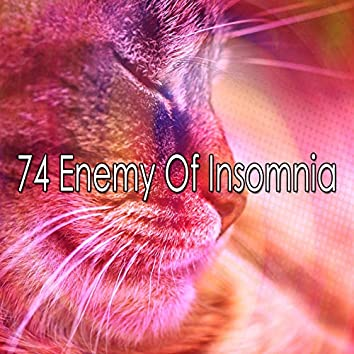 74 Enemy of Insomnia