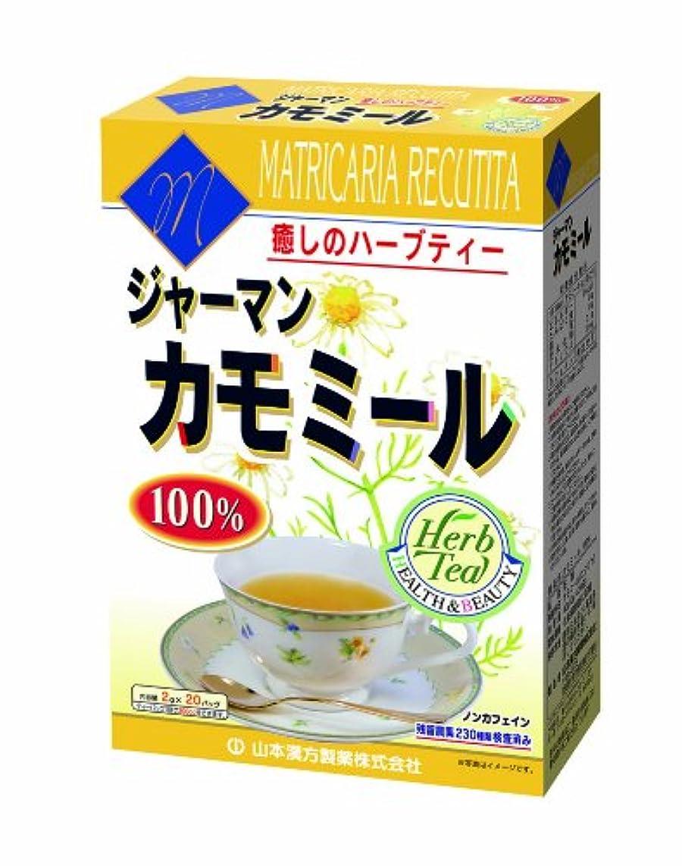 美容師おじいちゃん居心地の良い山本漢方製薬 カモミール100% 2gX20H