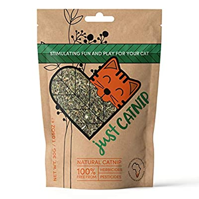 Just Catnip – 100% Natural Organic Catnip for Cats, Grown in South Africa | Sustainably Farmed and Ethically Cultivated Cat Toy & Cat Treat | The Perfect Cat Nip Gift for Eco-friendly Animal Lovers!