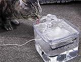Pecute Fuente de Agua para Gatos y Perros 3L Transparente Automático Dispensador Bebederos Gatos, 3 Modos de Agua, 40dB súper silencioso, Pack de 2 Filtros de Carbón