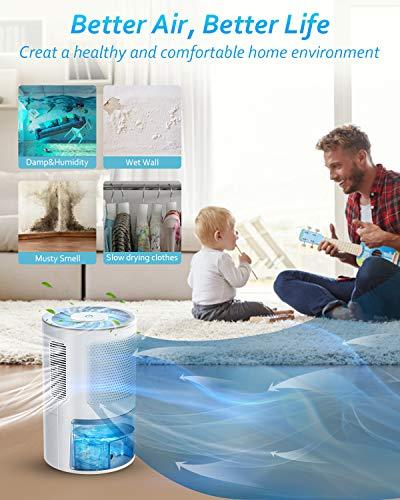 LONOVE Dehumidifiers for Home - 5000 Cubic Feet (450 Sq.ft) Upgraded with Drain Hose Dehumidifiers for Home Room Bathroom Bedroom Closet RV Basements, 1800ML (61 oz) Quiet Portable Small Dehumidifier