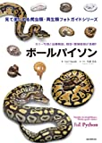 ボールパイソン (見て楽しめる爬虫類・両生類フォトガイドシリーズ)
