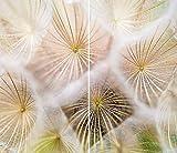 damu  ceranfeldabdeckung 2piezas 2x 30x 52cm cubiertas flores eléctrico Horno Cocina de inducción Placa de protección contra salpicaduras Cristal–Tabla de cortar Color blanco natural
