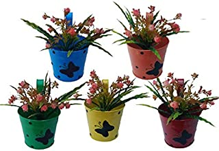 Royal Basket Round Dotted Butterfly Railing Planters for Home and Balcony Decoration (Multicolour, Pack of 5)