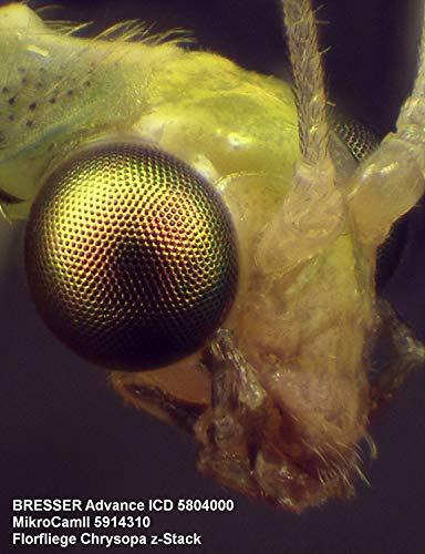 Bresser 3D Stereo Auflicht- Durchlicht Mikroskop Advance ICD 10x-160x mit trinokularem Kamera Aufsatz, Stereo Zoomobjektiv und starker Halogenbeleuchtung, inklusive 360° schwenkbarem Mikroskopkopf