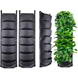 Mioke Macetas para plantas, 7 bolsillos, verticales, montaje en pared, para patio, jardín, decoración vertical, contenedor para flores