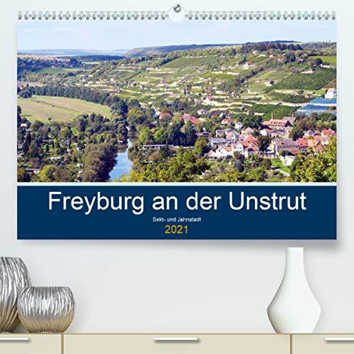 Freyburg an der Unstrut (Premium, hochwertiger DIN A2 Wandkalender 2021, Kunstdruck in Hochglanz)