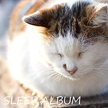 SLEEP ALBUM