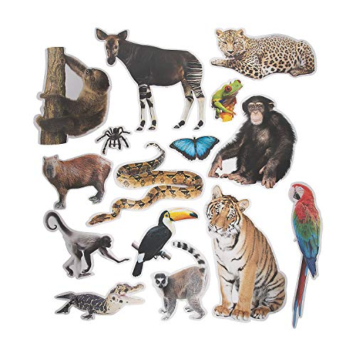 Fun Express Jumbo Realistic Rainforest Cutouts - 15 Pieces - Educational and Learning Activities for Kids