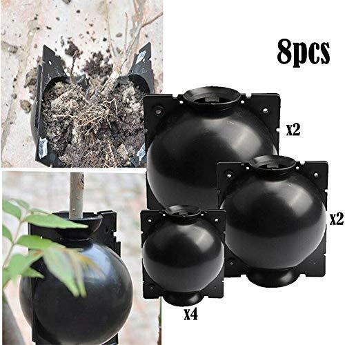 Newin Star Plante Racine Intensification boîte réutilisable 3 Taille de Propagation des végétaux à Billes Pod marcottage Plante Racine de Propagation Rapide Balle pour la Croissance des Racines 8Pcs