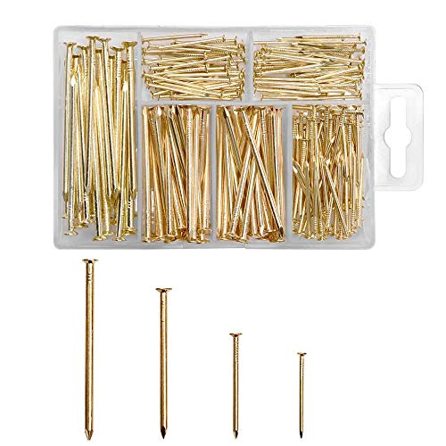 TAIANJI 250 Stk Goldene Nägel Rundkopf Hölzerne Nägel DIY Dekorative Rostfrei Gold Heftzwecken Lang Nagelstift zum Aufhängen, Bilderrahmenspiegeln und Holzbearbeitung