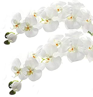 Best orchids decoration for wedding Reviews