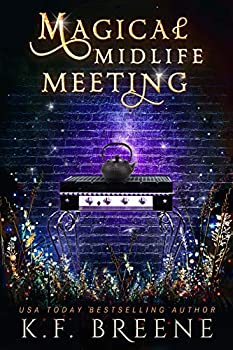 Magical Midlife Meeting  A Paranormal Women s Fiction Novel  Leveling Up Book 5