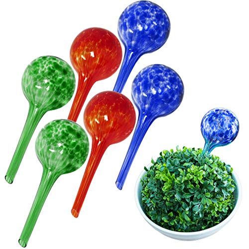 Evelots Plant Watering Globe-Glass-Automatic Water System-Indoor/Outdoor-Set/6