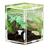 Caja de Reptiles Transparente Acrílico Caja de Alimentación de Insectos Recipiente para La Cría de Reptiles Estuche Transparente para Cría de Reptiles, para Lagartijas, Escorpiones