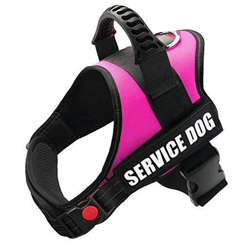 FAYOGOO Dog Vest Harness