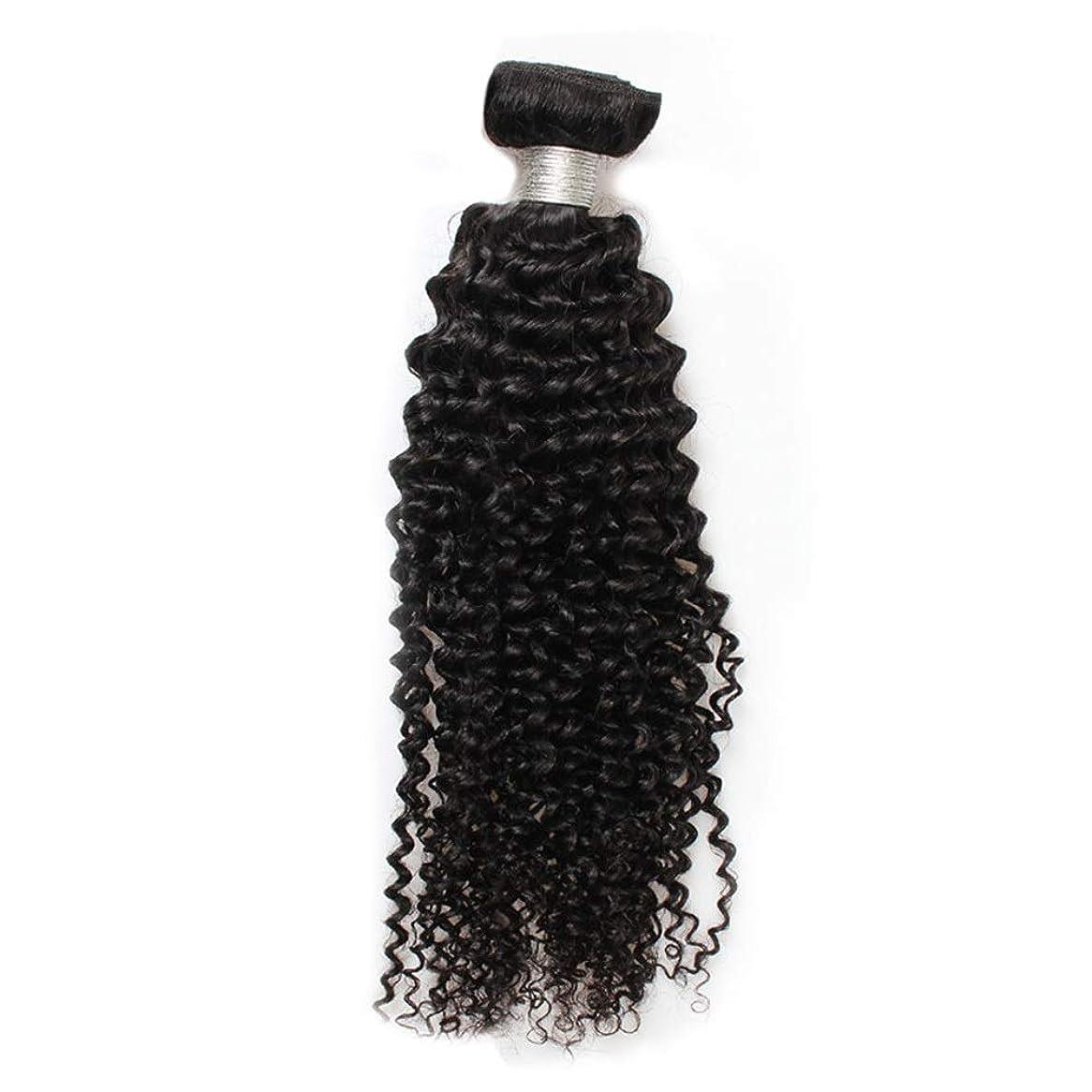 サスペンド踏み台村YESONEEP 8aブラジル巻き毛バンドル人間の毛髪1バンドルナチュラルカラーロールプレイングかつら女性のかつら (色 : 黒, サイズ : 26 inch)