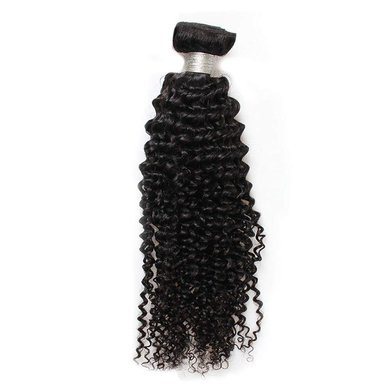 マチュピチュ形フランクワースリーYESONEEP 8aブラジル巻き毛バンドル人間の毛髪1バンドルナチュラルカラーロールプレイングかつら女性のかつら (色 : 黒, サイズ : 20 inch)