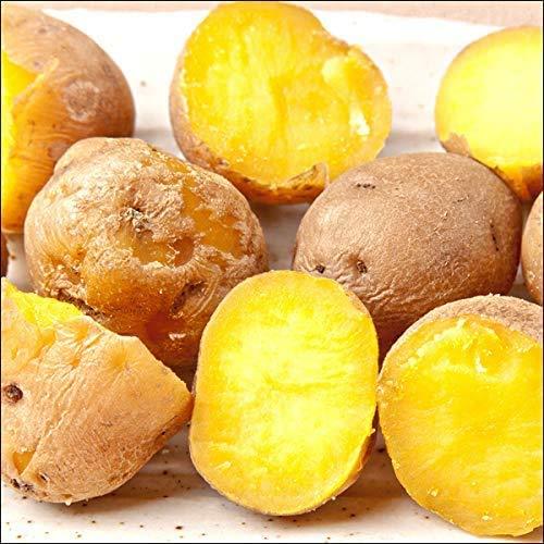 北海道産 新じゃが じゃがいも ひと口 インカのめざめ 5kg(共撰/S-SSサイズ) ジャガイモ 馬鈴薯 野菜 北海道 お取り寄せ