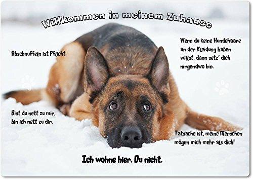 Merchandise for Fans Blechschild/Warnschild/Türschild - Aluminium - 20x30cm - - Willkommen in Meinem Zuhause - Motiv: Deutscher Schäferhund liegt im Schnee - 17