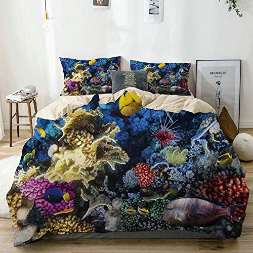 Juego de funda nórdica beige, colonia de peces y arrecifes de coral coloridos en el mar Rojo, Egipto, África, vida submarina, juego de cama decorativo de 3 piezas con 2 fundas de almohada, fác