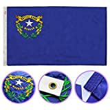 Winbee Nevada State Flag 3x5 Ft - Premium Embroidered, Long Lasting 300D Nylon, Sewn Stripes, Sturdy Brass Grommets and UV Protected. Best American Nevada Flag Great for Outdoor/Indoor Display.