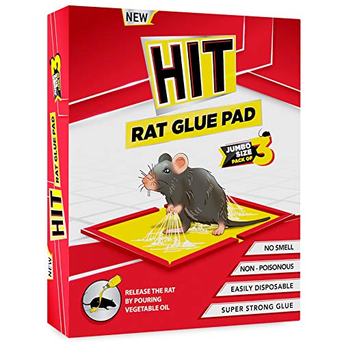 HIT Rat/Mouse Glue Pad - No Smell, Non – Poisonous, Easy to Use (Pack of 3 Jumbo Size)