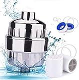 Filtro de ducha, BASEIN Filtro de agua de 17 etapas Plastificante Cabezal de ducha Filtro de agua, que incluye 2 cartuchos de filtro intercambiables, carcasa de cromo, cinta de teflón y 6 anillos