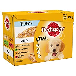 Pedigree Junior Wet Food for Young Dogs and Puppies, 12x100g