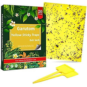 Garutom 20-Pack Dual-Sided Yellow Sticky Traps for Flying Plant Insect Such as Fungus Gnats Whiteflies Aphids Leafminers etc  6x8 Inches Included 20pcs Twist Ties