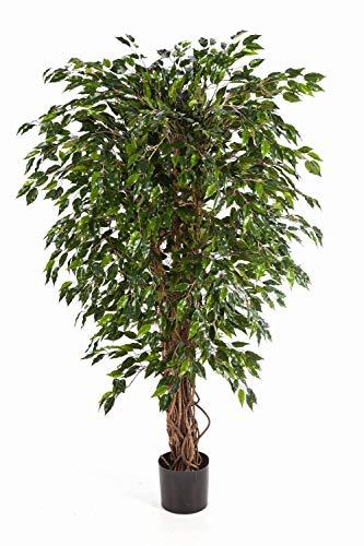 artplants.de Ficus Artificial DAKU con 3340 Hojas Verdes y Troncos Naturales, 180cm - árbol Decorativo - Planta Textil