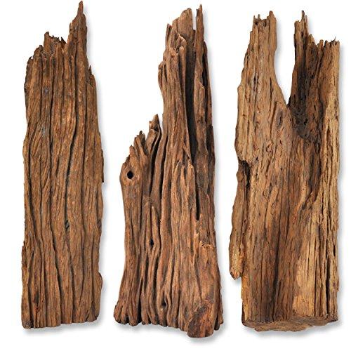 *Mangrovenwurzel für Terrarium Aquarium Garten Deko Wurzel Echtholz Treibholz Reptil Mangrove M-XL Holz verschiedene Größen und Modelle erhältlich *alles Einzelstücke* (M (40-80 cm), Modell 2)*