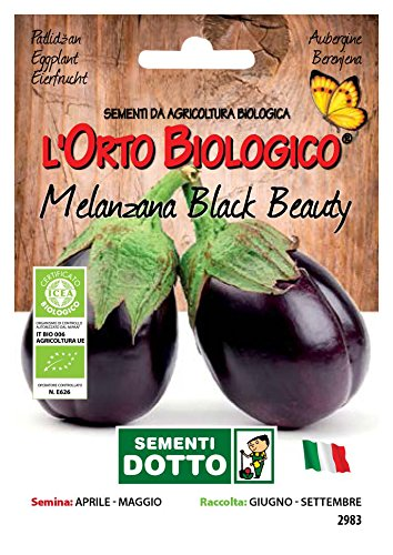 Sdd O.Bio_Melanzana Black Beauty Seme, 0.02x15.5x10.8 cm