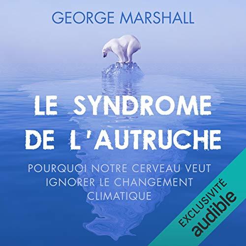 Le syndrome de l'autruche cover art