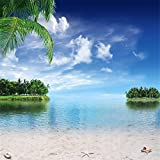 YongFoto 3x3m Vinile Sfondo Fotografico Spiaggia Mare Balneare Paesaggio Cielo Blu Nuvole Bianche Palma isola Fondali per Studio Fotografico Partito Festa Banner Bambini Photo Studio Puntelli