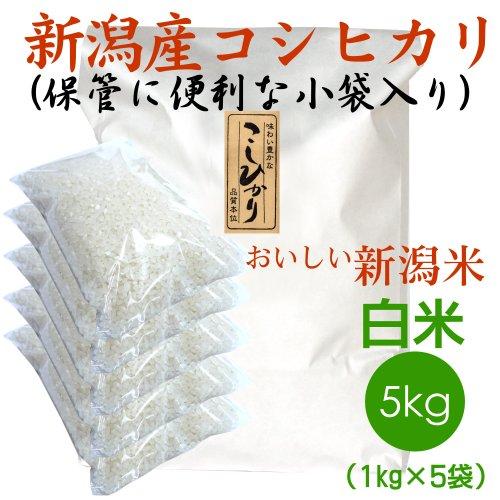 【おにぎりに最適】新潟県産 白米 コシヒカリ 5kg