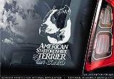 Externo Exterior Estampado Parachoques Pegatina Regalo Blanco//Claro Perro Firmar Ventana 160x100mm V002 Sticker International Schnauzer Adhesivo Coche