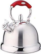 Ketel 304 Roestvrij Staal Verdikking Grote Capaciteit Kolen Gas Inductie Cooker Universele Huishoudelijke Fluiten 5L HZYDD